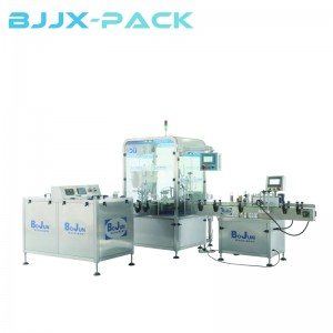 BGX-1-2D Monoblock Rotary filling capping line
